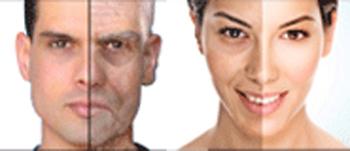 Des super aliments qui luttent contre le vieillissement