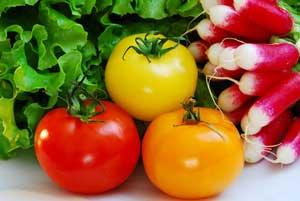 Antioxydants : Solutions contre les rides précoces